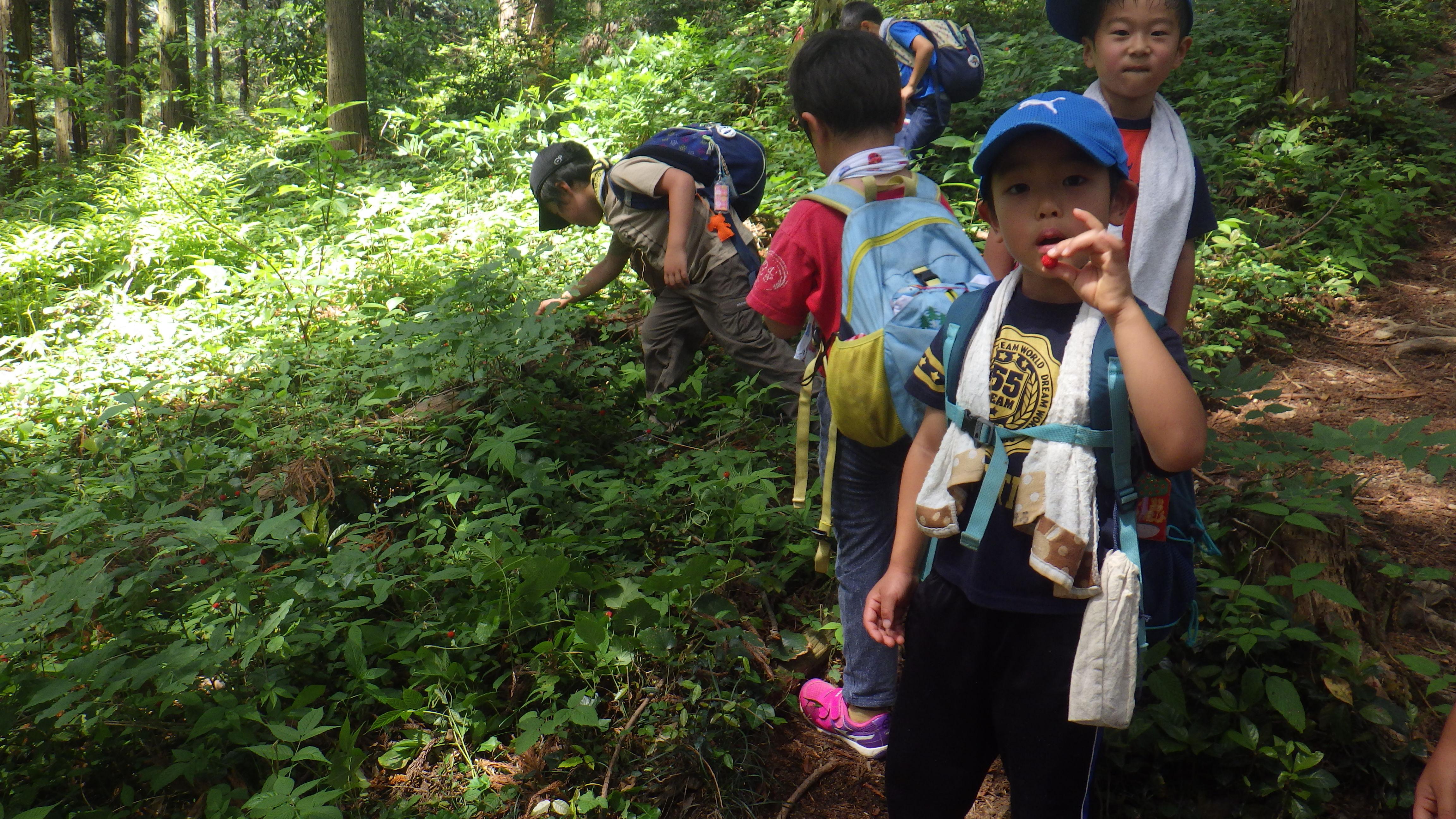 登山の様子 5.JPG