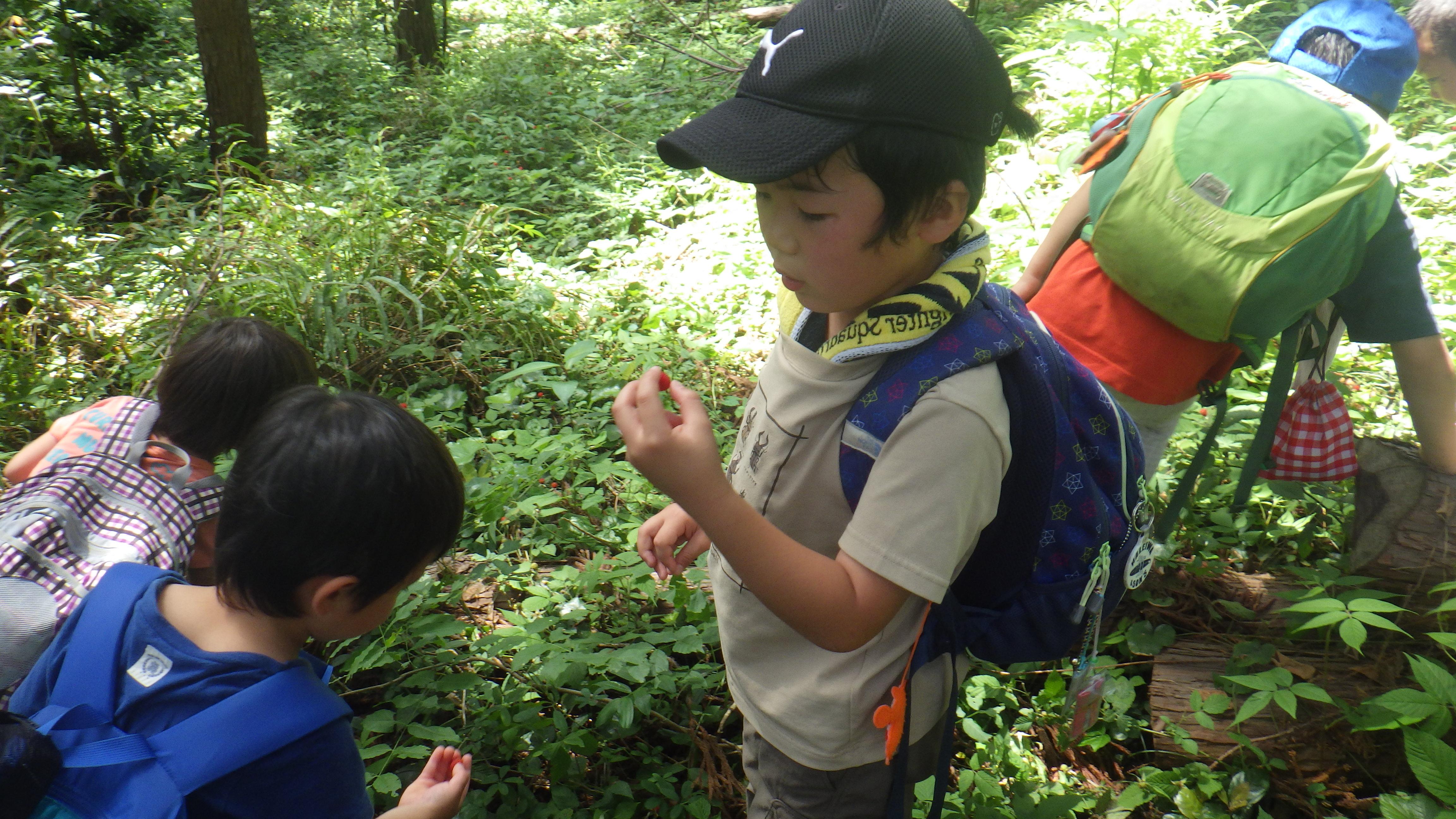 登山の様子 7.JPG