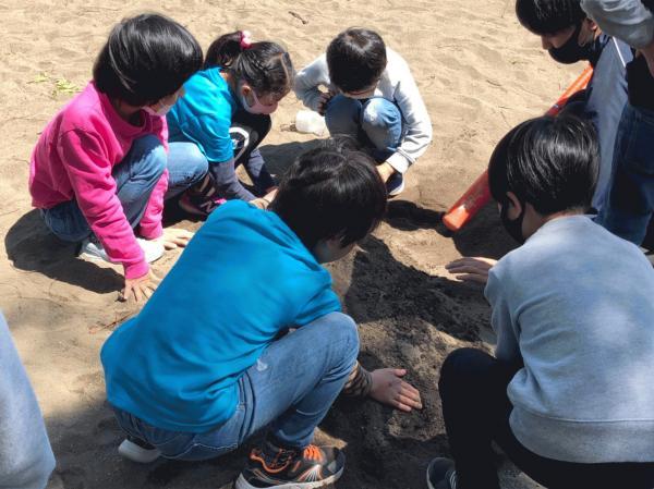 4月10日 伊豆の山公園+_210413_17.jpg