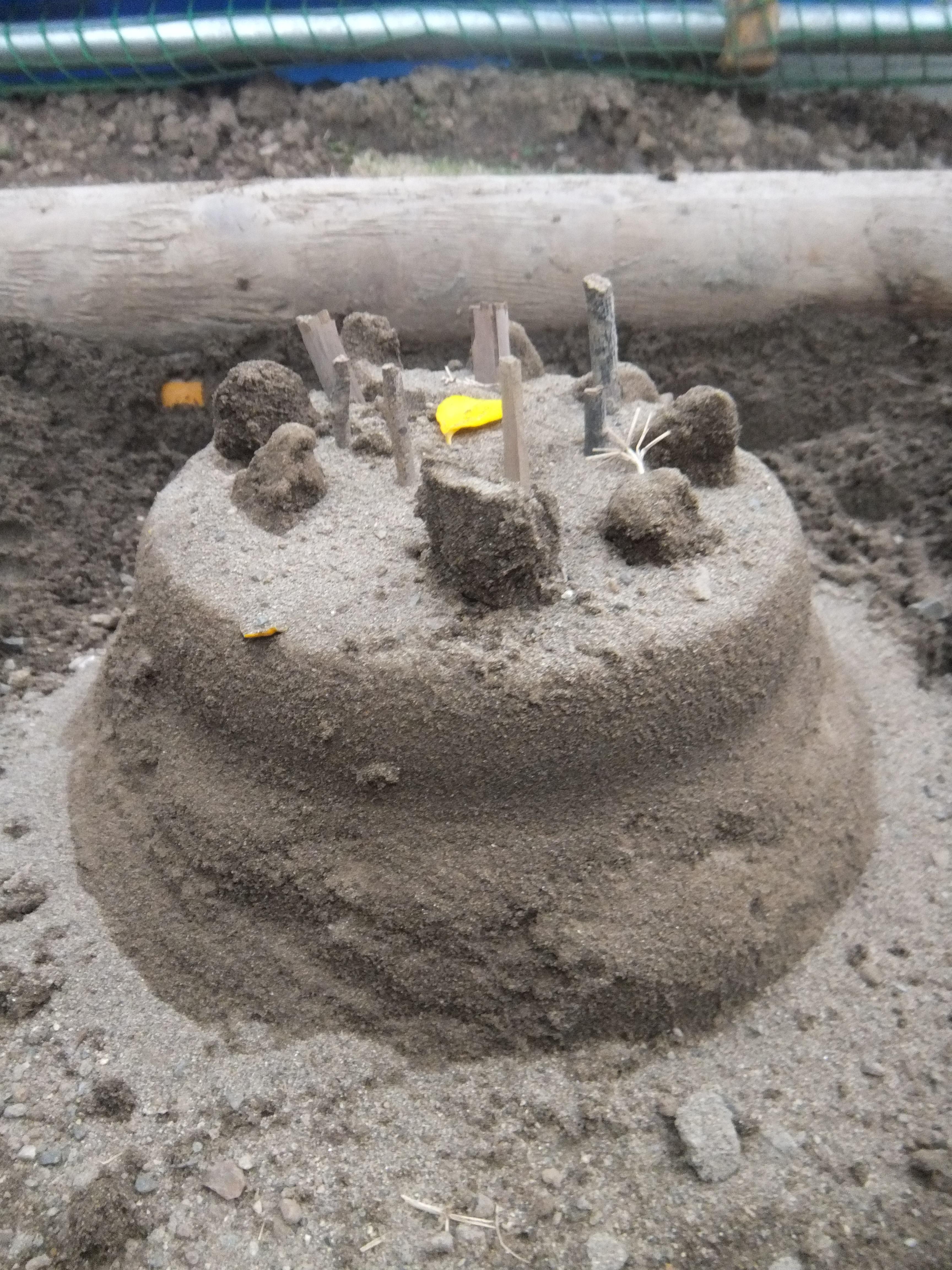 砂ケーキ.JPG